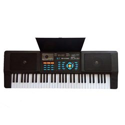 Lightahead Premium Grade 61 Keys Electronic Keyboard Piano Organ with Sing along Microphone Port ...
