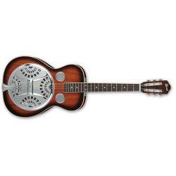 Ibanez RA200 Acoustic Resonator Guitar