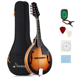 Donner A Style Mandolin Instrument Sunburst Mahogany DML-1 With Tuner String Big Bag and Guitar  ...