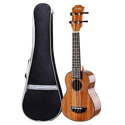 Ukulele, Concert Ukulele 23 inch, Mahogany Polished Ukulele, 4 String with Aquila Strings Hawaii ...