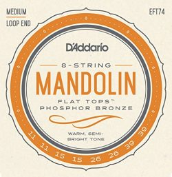D'Addario EFT74 Flat Tops Mandolin Strings, Medium, 11-39