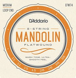 D'Addario EFW74 Phosphor Bronze Flatwound Mandolin Strings, Medium, 11-36