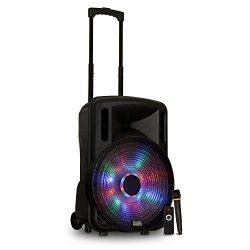 Acoustic Audio by Goldwood Sound Module, 24″ x 16″ x 13.75″ (PRTY151)