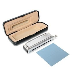 Pyle Professional Stainless Steel Metal 10 Hole Chromatic Harmonica Kit – Set Includes Sto ...