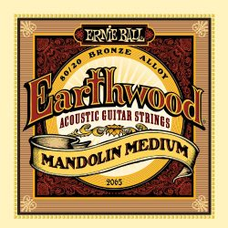 Ernie Ball Earthwood Mandolin Medium 80/20 Bronze Loop End Set, .010 – .036