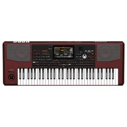 Korg Pa1000 61-Key Professional Arranger