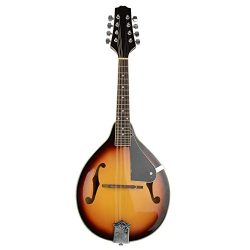 IRIN A-Style Elegant Maple Wood Mandolin Musical Instrument with Strings Set
