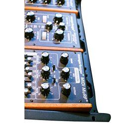 Moog Synthesizer (RM-KIT-0002)