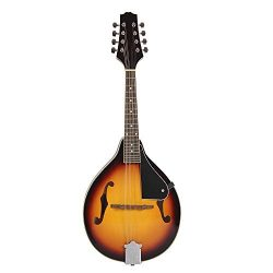 ammoon 8-String Basswood Sunburst Mandolin Musical Instrument with Rosewood Adjustable Bridge