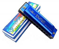 Diatonic Harmonica, 10 Holes Blues Harmonica, Key of C – Best for Kids and Beginners, Ligh ...