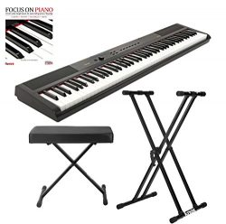 Artesia 88 Key Digital Piano (Black) with Knox Piano Bench, Stand and Book