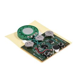 Fosa 30s Music Sound Voice Recording Module Device Chip 0.5W with Button Battery for DIY Audio C ...