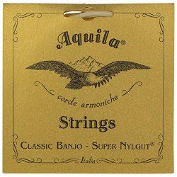 Aquila New Nylgut AQ-1B Banjo Strings – Medium Tension DBGDG – 1 Set of 5 (4th Red Series  ...