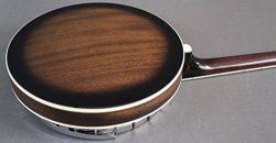 Fender Robert Schmidt Banjo , Plectrum
