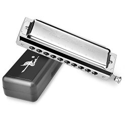 Professional chromatic swan slide harmonica in hard case mouth organ C tune sliver