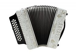 Rizatti Bronco RB31FW Diatonic Accordion – White – Key F/Bb/Eb with Padded Bag