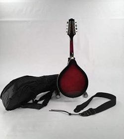 A-Style Mandolin Oval Soundhole Dark Wineburst Finish Set-Up & Adjusted In My Shop For Easy  ...