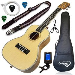 Ukulele from Lohanu Spruce Top Zebra Wood Sides & Back With All Accessories Included! (Conce ...