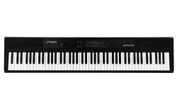 Artesia 88-Key Portable Keyboard, Single (Performer)