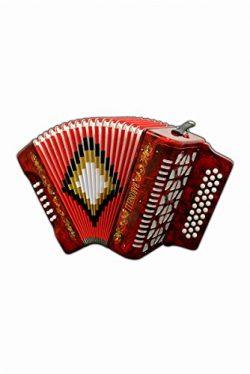 Full Size 31 Button Red Diatonic Accordion Key of SOL G,C,F, with Hardshell Case and Back Straps ...