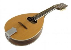 MANDOLIN – A Style – 8 String – Teardrop with Oval Soundhole 24.5″ Long  ...