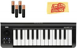 Korg microKEY Air 25-Key Wireless MIDI Controller Bundle with AA Batteries and Austin Bazaar Pol ...