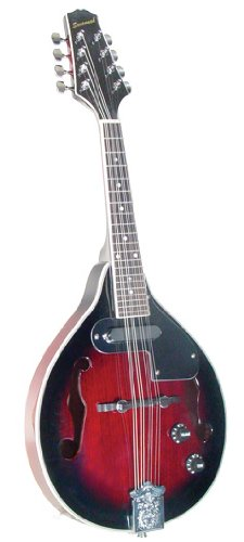 Savannah SA-115-E Madison Mandolin