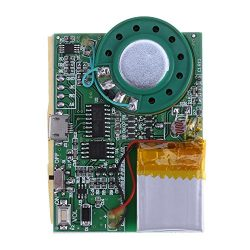 Module, Programmable Sound Chip Voice Chip Music Board Module For Greeting Card DIY