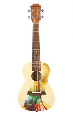 VIVICTORY Concert Ukulele 23 Inch Spruce Mahogany and Painting style with Beginner kit : Gig Bag ...