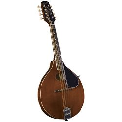 Kentucky Mandolin (KM-276)