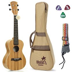Concert Ukulele Deluxe Series by Hola! Music (Model HM-124ZW+), Bundle Includes: 24 Inch Zebrawo ...