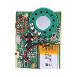 fosa USB Music Sound Voice Recording Module Device Chip 1W with Rechargeable Lithium Battery for ...