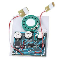 DIY Sound Chip, 30s Recordable Music Sound Voice Module Chip Audio Cards with Button Battery Wir ...