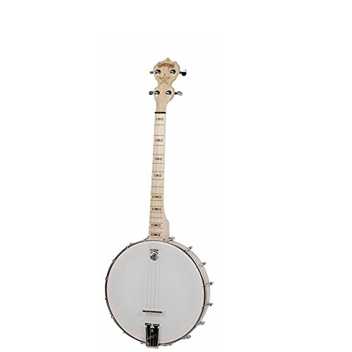 Deering Goodtime 17-Fret Tenor Banjo