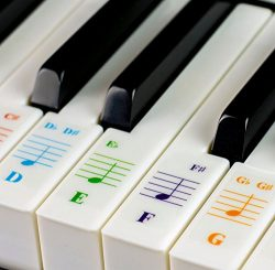 Color Piano Stickers for 49/61/ 76/88 Key Keyboards – Transparent and Removable with Free Piano  ...