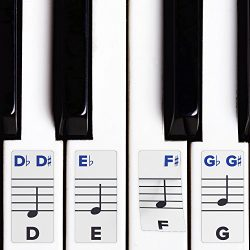 Piano Stickers for Keys – Removable w/Double Layer Coating for 49/61 / 76/88 Keyboards