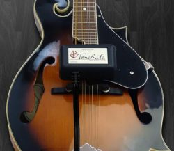 ToneRite 3G Mandolin | Accelerate Your Instruments' Play-In Process | Improve Your Instrum ...