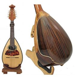 Bowl Back Mandolin Solid Spruce top Indian Rosewood/Curly Maple Violin head NBMI (Indian Rosewood)