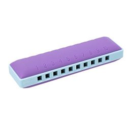 Naimo Children Beginners 10 Holes Harmonica Mouth Organ with Case Musical Instrument Educational ...
