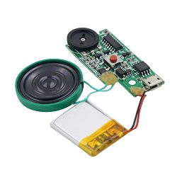 Rechargeable MP3 Sound Chip Module Voice Player Circuit Board with Speaker Lithium Battery Power ...
