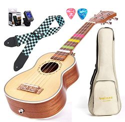 Balnna 21 Professional Ukulele Maple Traditional Learn to Play,Color String with Soft Case Gig B ...