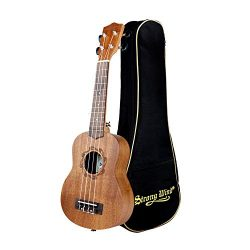 Soprano Ukulele Mahogany 21 inch Hawaiian Ukelele 4-String Starter With Case for Beginners Music ...