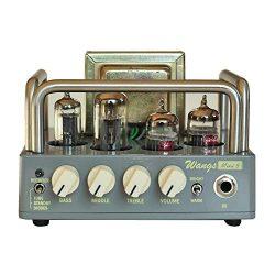 BIYANG Wangs Guitar Amplifier Mini 5 Powerful 5 Watt All Tube Amp Head with 12AX7 12BH7 6Z4 Tube ...