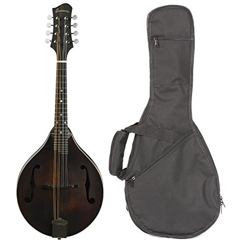 Eastman MD305 All Solid Wood A Style Mandolin Satin Nitrocellulose Chrome Hardware