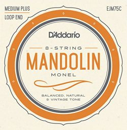 D'Addario Mandolin Monel Set, Medium Plus, 11-41 (EJM75C)