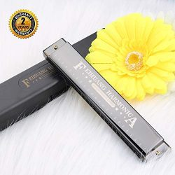 Harmonica for Beginners,C Key 24 Holes Major Diatonic Double Tremolo Harmonicas with Case for Ki ...