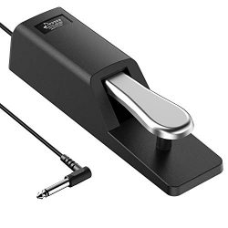 Donner DSP-002 Sustain Pedal for Keyboard Digital Piano Foot Pedal