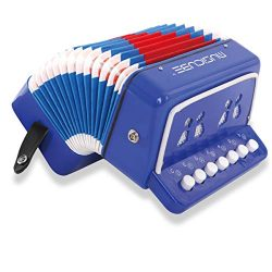 MUSICUBE 10 Keys Accordion, Kids Toy Accordion, Solo and Ensemble, Musical Instrument for Early  ...