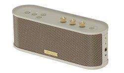 Roland Bluetooth Speaker with Guitar Input (BTM-1)