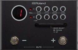 Roland Dual Input Trigger Module with WAV Manager Application (TM-1)